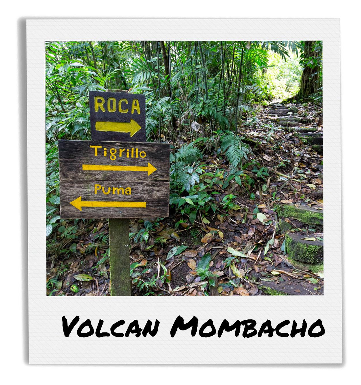 Volcano Mombacho Tour