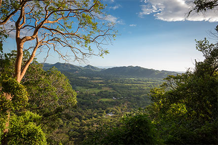 View South from Finca Las Nubes