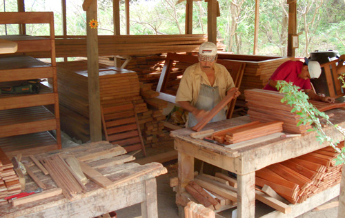Sustainable hardwood products